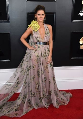 Every Red Carpet Look from the 2019 Grammys, from Miley Cyrus to Camila Cabello