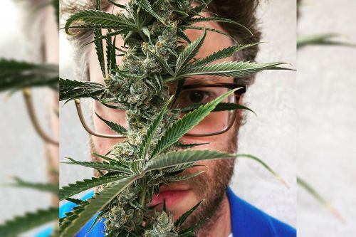 Seth Rogen to launch weed company Houseplant in US: 'My life's work'