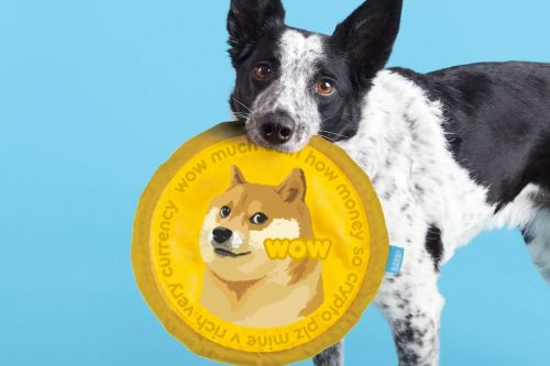 """Celebrate Your Dogecoin Earnings With a """"Cogedoin"""" Frisbee for Your Doge"""