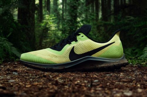 Nike Is Set to Bring Back the Air Zoom Pegasus Trail