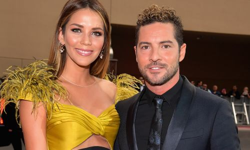 Spanish Singer David Bisbal Is Engaged to Longtime Girlfriend Rosanna Zanetti!