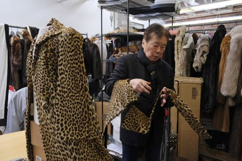 San Francisco becomes largest US city to ban fur