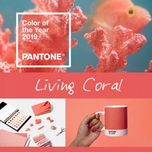 "Pantone 2019 Color of the Year: The Best ""Living Coral"" Fashion and Beauty"