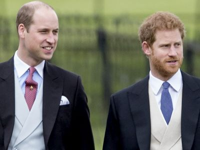 Prince Harry & Prince William Are Honoring Mother Princess Diana In A Very Special Way