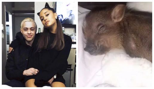 Pete Davidson Just A Got A Tattoo Of The Baby Pig He Adopted With Ariana Grande