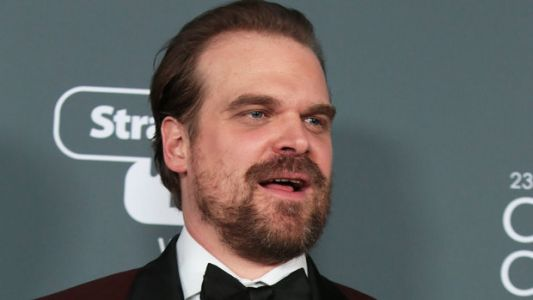 David Harbour Hijacks Student's Senior Photos After Twitter Joke Goes Viral