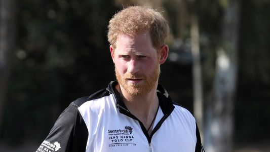 Prince Harry Attends a Polo Match During His First Night Away From Meghan Markle and Baby Archie