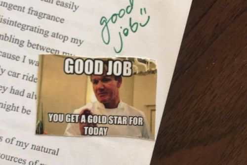 English Teacher Uses Memes to Grade PapersIt doesn't feel