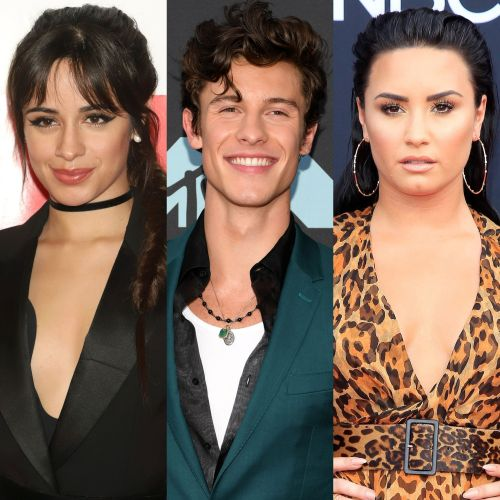 Camila Cabello and Shawn Mendes Send Demi Lovato Flowers With a Thoughtful Note: 'You Inspired Us'